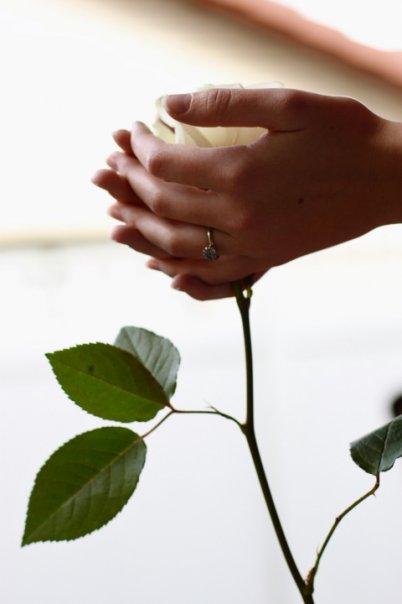 nurture_rose