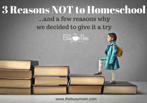Three reasons NOT to homeschool ... and a few reasons why we decided to give it a try