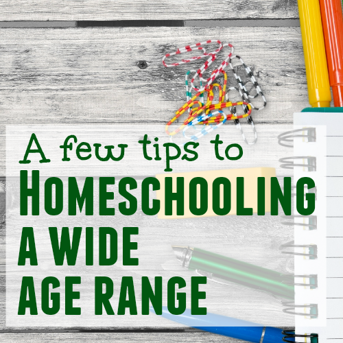 A Few Tips to Homeschooling a Wide Age Range 2