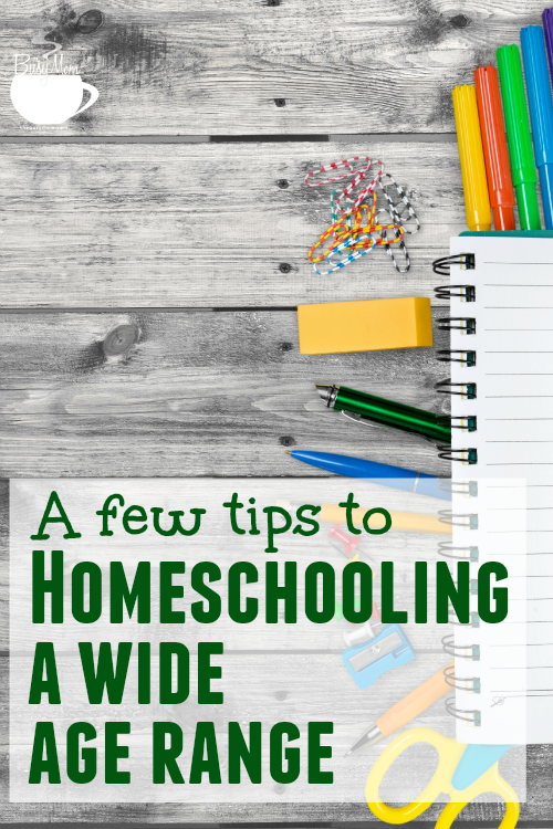 A Few Tips to Homeschooling a Wide Age Range