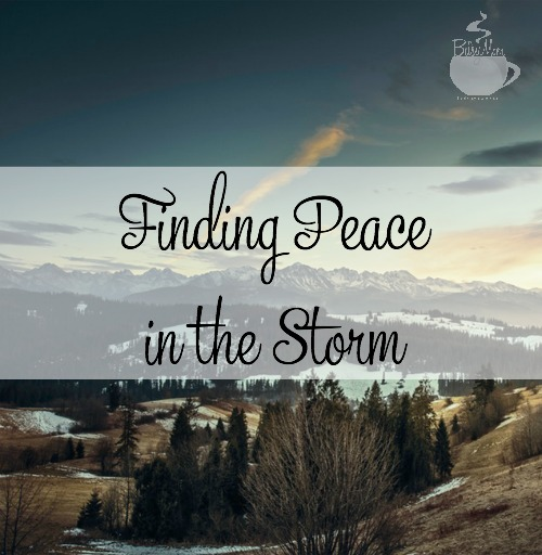Finding Peace in the Storm TheBusyMom.com