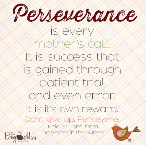 PPSA_perseverance