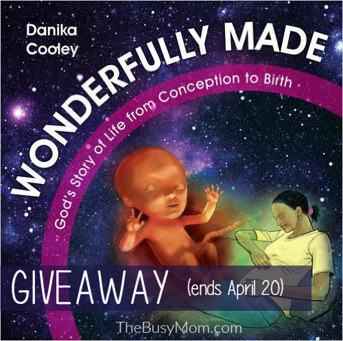 Wonderfully Made Giveaway tbm