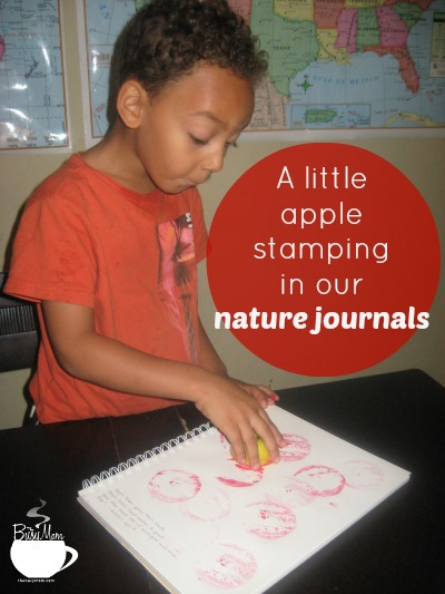 Indoor Nature Study on Apples |  heidistjohn.com/tbmb