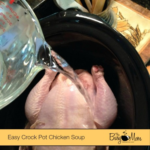 chickensoup_water