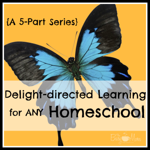 delight-directed homeschool