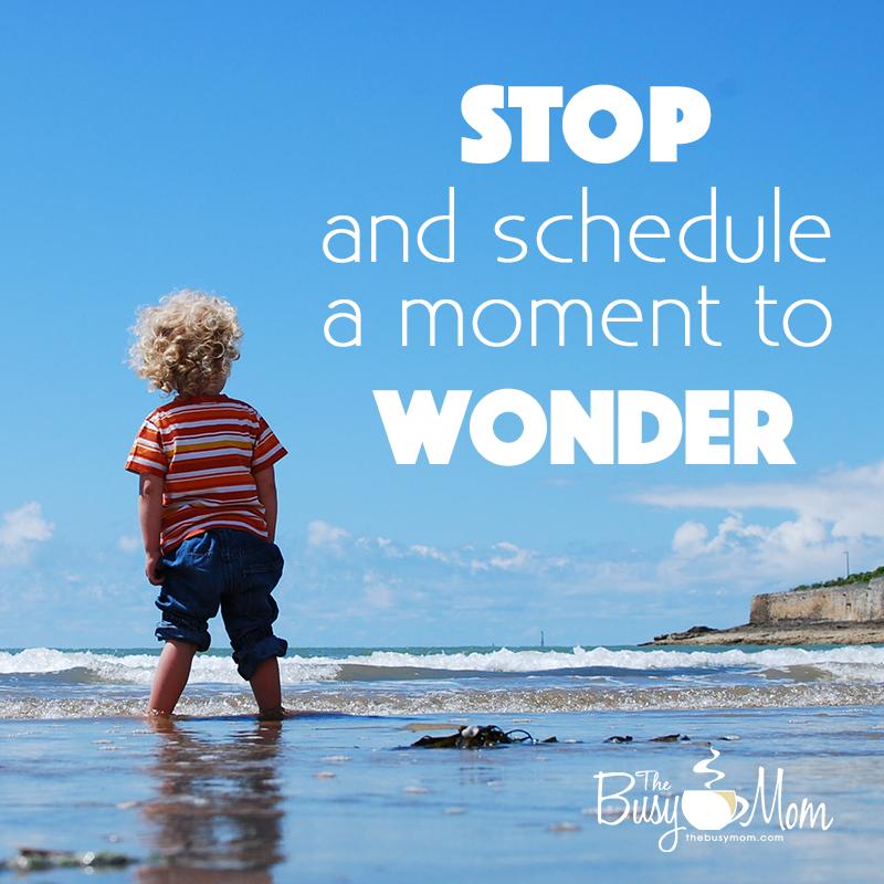 moment-wonder
