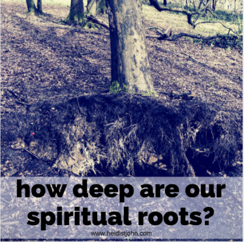 Storms reveal the strength of our root system.