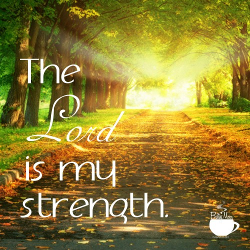 the lord is my strength author and speaker heidi st john
