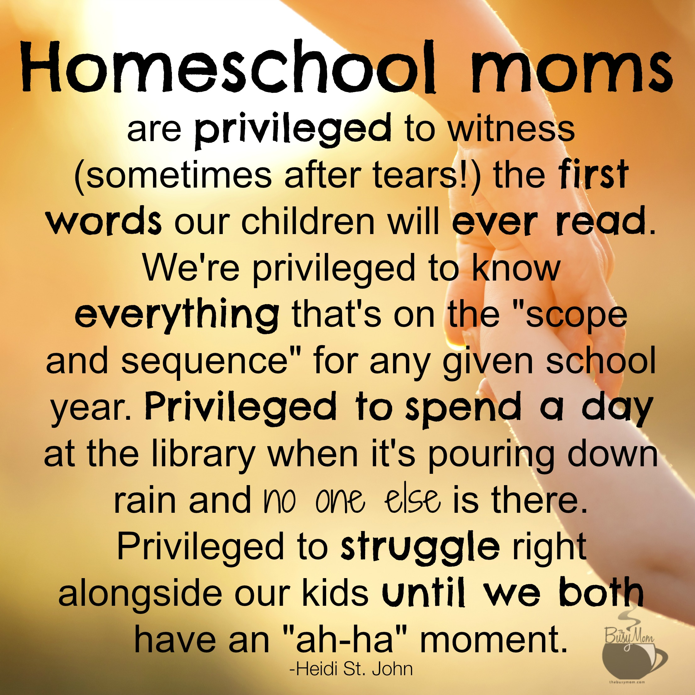 why i want to homeschool Why we're not taking the summer off from homeschool  i don't want to lose the momentum we have in place i don't want to experience the summer slide.