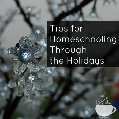 Homeschool Holidays